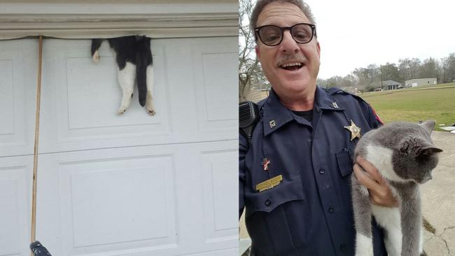 Deputy, community save cat who was stuck in garage door