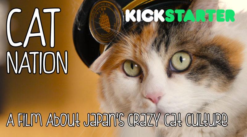 New Documentary Turns Japanese Cats Into Feline Film Stars