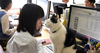 Cats and Dogs and Goats (in the office), Oh My!